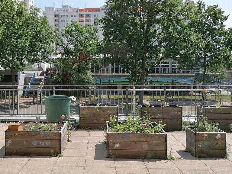 urban-gardening-projekt
